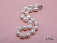 Elegant white seashell pearl necklace with gilded clasp