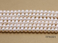 Wholesale 6.5×8.5mm Classic White Flat Freshwater Pearl String
