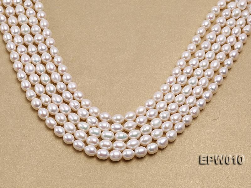 wholesale 8.5×9.5mm white elliptical freshwater pearl strings