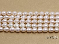 wholesale 8.5×9.5mm white elliptical freshwater pearl strings