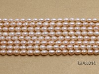 Wholesale 5×6.5mm Pink & Lavender Rice-shaped Freshwater Pearl String
