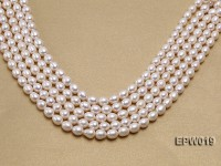 Wholesale 8.5x9mm Classic White Rice-shaped Freshwater Pearl String