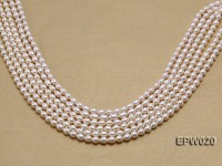 Wholesale 5.5x7mm Classic White Rice-shaped Freshwater Pearl String