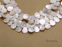 Wholesale 13x15mm White Drip-shaped Seashell String