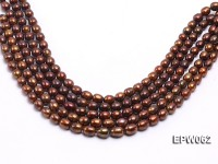 Wholesale 9x11mm Brown Rice-shaped Freshwater Pearl String