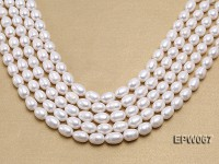Wholesale 9.5x13mm Classic White Rice-shaped Freshwater Pearl String