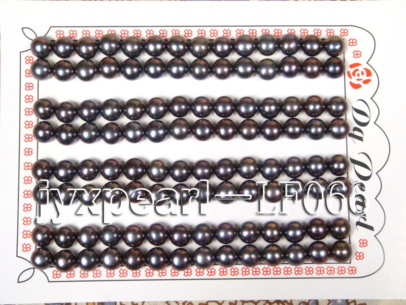 Wholesale Sheets of AA-grade 6.5-7mm Black Flat Pearls—56 Pairs
