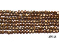 Wholesale Super-size 4x6mm Coffee Flat  Freshwater Pearl String