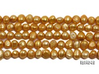 Wholesale 6x8mm Golden Falt Freshwater Pearl String