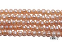 Wholesale 6x8mm Pink  Flat Freshwater Pearl String