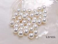 Wholesale 10-10.5mm White Round Seashell Pearl Bead