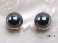 Wholesale 16.5-17mm Black Round Seashell Pearl Beads