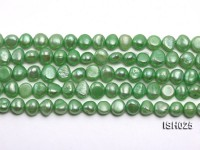 Wholesale 6x8mm  Light Green Flat Freshwater Pearl String
