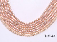 Wholesale 5.5x7mm Pink/Lavender Flat Cultured Freshwater Pearl String