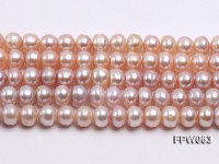 Wholesale 7×9.5mm Pink/Lavender Flat Cultured Freshwater Pearl String