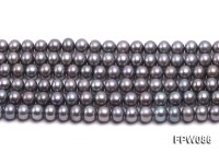 Wholesale 6.5×8.5mm Black Flat Cultured Freshwater Pearl String