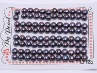 Wholesale Cards of 7.5-8.0mm Coffee Black Flat Freshwater Pearls—48 Pairs