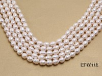 Wholesale 10×12.5mm Rice-shaped Freshwater Pearl String