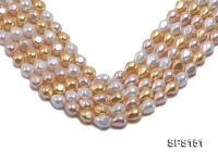Wholesale 12×15.5mm Multi-color Prismatic Seashell Pearl String