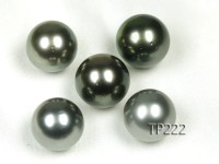 Tahitian Pearl–Super-size 15.5mm Round Natural Black Pearl