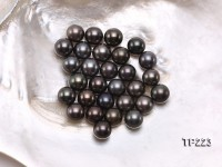 Tahitian Pearl–Quality 12-13mm Round Natural Black Pearl