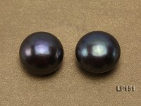 Super-size 15-15.5mm Black Flat Loose Pearl