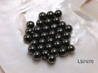 Wholesale 12-13mm Black Round Seashell Pearl Bead