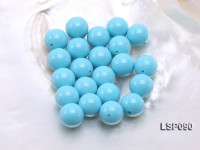 Wholesale 14.5mm Sky-blue Round Seashell Pearl Bead