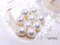 Wholesale 18.5mm White Round Seashell Pearl Bead