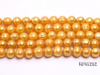 Wholesale 10-11mm Golden Round Freshwater Pearl String