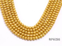 Wholesale 8.5mm Golden Round Freshwater Pearl String