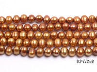 Wholesale 9-10mm Golden Round Freshwater Pearl String