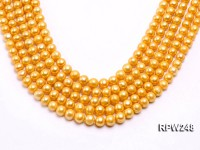 Wholesale 8.5-9.5mm Golden Round Freshwater Pearl String