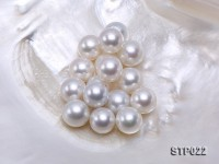 South Sea Pearl—AA-grade 14-15mm Classic White Round South Sea Pearl