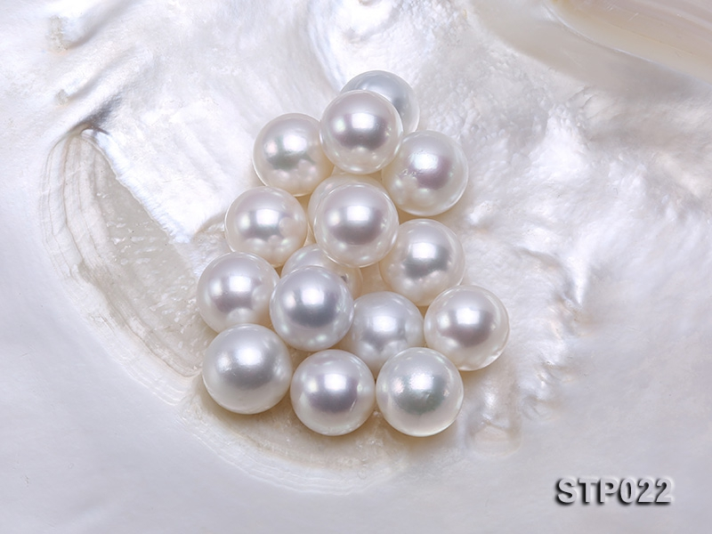 South Sea Pearl—AA-grade 14-15mm Classic White Round South Sea Pearl