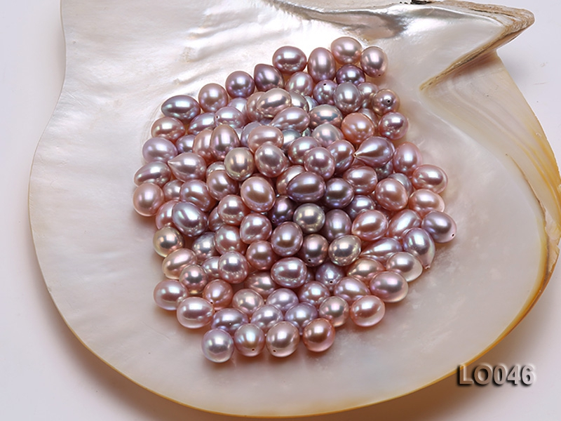 Understanding the Formation Process of Precious Freshwater Pearl