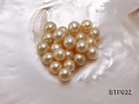 12-13mm Golden Round South Sea Pearl