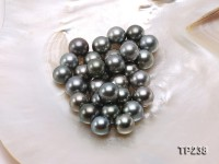 13-14mm Black Round Loose Tahitian Pearls