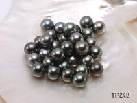 14-15mm Black Round Loose Tahitian Pearls