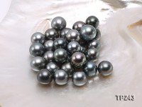 14.5-15.5mm Black Round Loose Tahitian Pearls