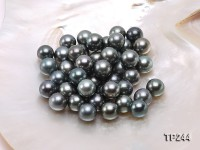 12-13mm Black Round Loose Tahitian Pearls