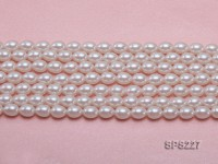 Wholesale 8x10mm White Oval Seashell Pearl String
