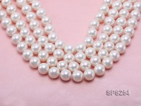 Wholesale 16mm Round White Seashell Pearl String