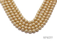 Wholesale 12mm Round Golden Seashell Pearl String