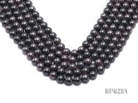Wholesale 10mm Round Black Seashell Pearl String