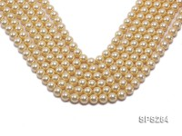 Wholesale 10mm Round Golden Seashell Pearl String