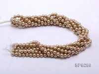 Wholesale 8mm Round Champagne Seashell Pearl String