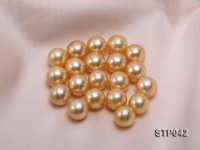 13-14mm Golden Round South Sea Pearl