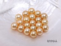 14.5-15mm Golden Round South Sea Pearl
