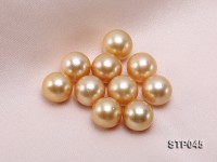 13.5-14.5mm Golden Round South Sea Pearl